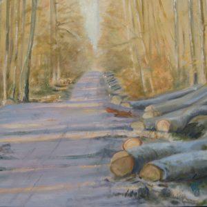 Lumières dans le chemin forestier ; huile ; 50x73cm